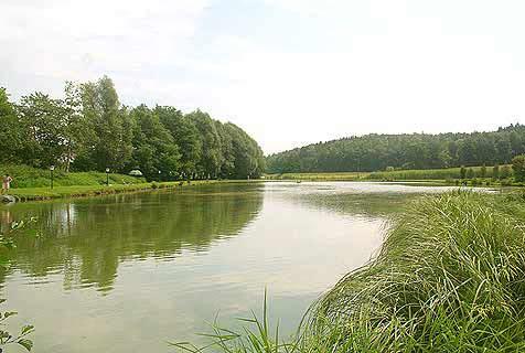 Ninaus club sportfischerparadies angeln fischen ninaus for Teich mit fischen