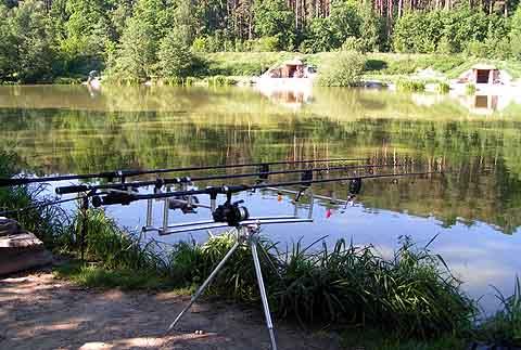 Eichleitn teich winzendorf eichleitnteich terler teich for Teich mit fischen
